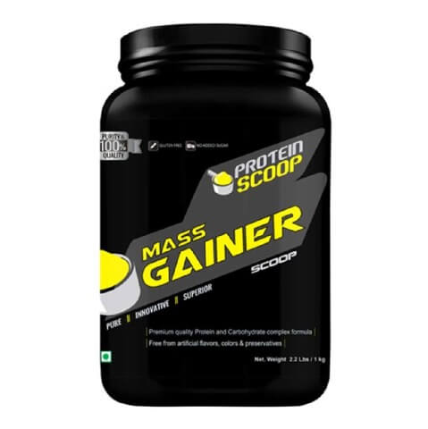 Protein Scoop Mass Gainer,  Chocolate  2.2 lb