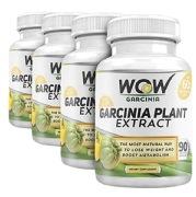 WOW Garcinia Plant Extract Pack of 4,  90 veggie capsule(s)