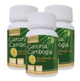 Bhumija Garcinia Cambogia (350 Mg Pack Of 3),  60 Capsules