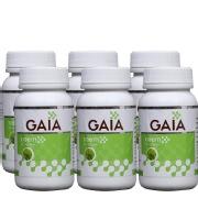 GAIA Neem (Pack of 6),  60 capsules