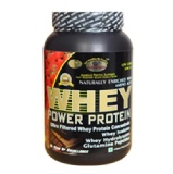 GDYNS Whey Power Protein,  0.46 Lb  Choco