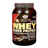GDYNS Whey Power Protein,  1.1 lb  Choco