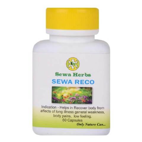 Sewa Herbs Reco,  60 capsules