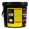 Healthvit Mass Gainer Xtra,  11 lb  Chocolate