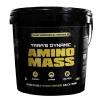 Tara Nutricare Amino Mass,  8.8 lb  Vanilla