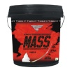 Muscle Fit Mass Gainer,  11 lb  Vanilla