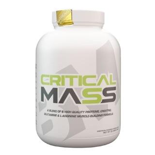 1 - Big Muscles Critical Mass,  6 lb  Malt Chocolate